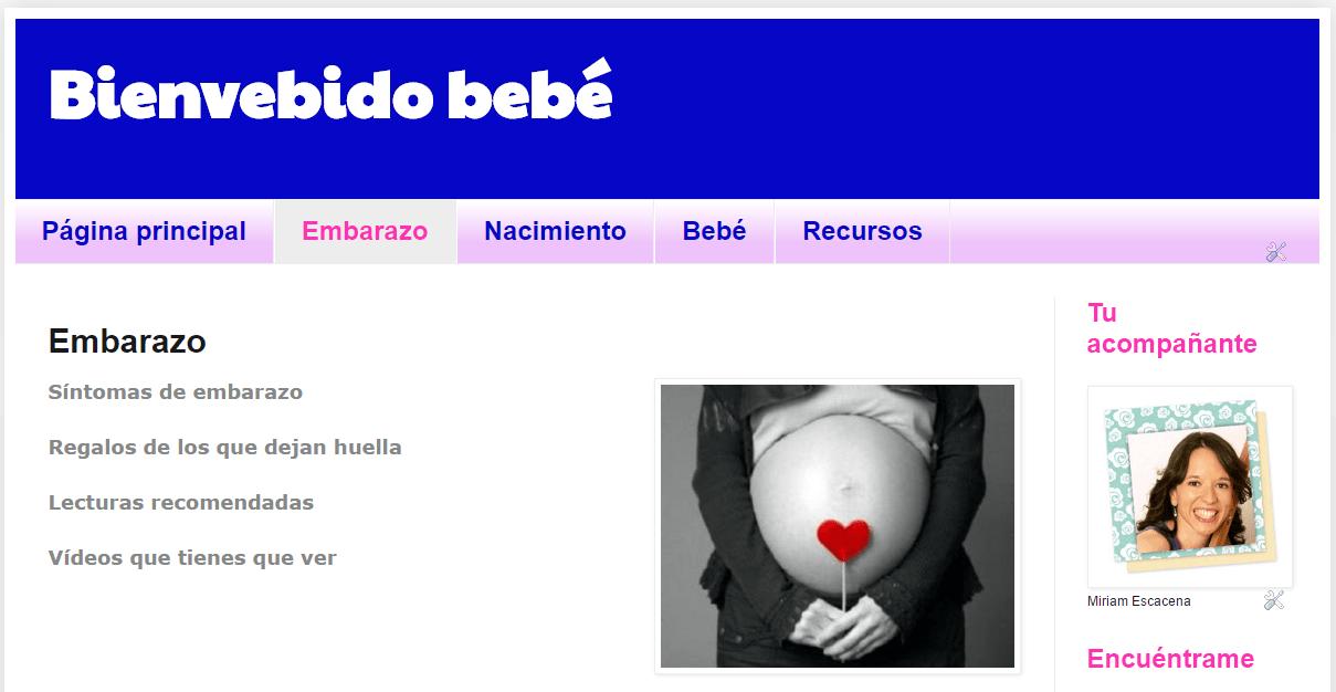curso-bienvenido-bebe-plataforma
