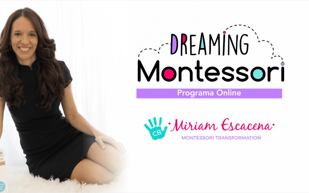 Dreaming Montessori