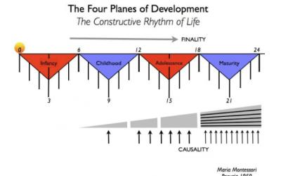 María Montessori y los planos del desarrollo