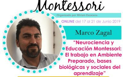 Neurociencia y Educación Montessori